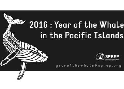 SPREP Year of the Whale Workshop