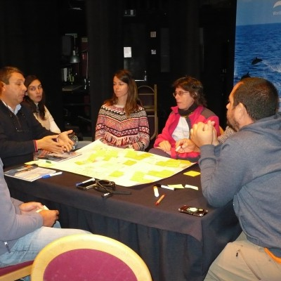 Azores Announces 2nd Responsible Whale Watching Workshop
