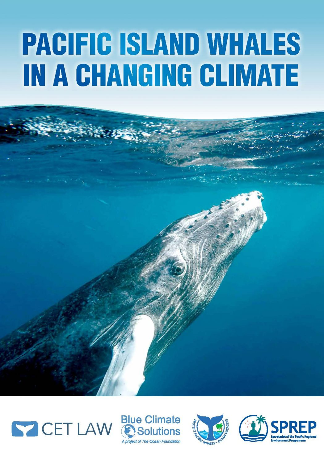 Pacific Island Whales in a Changing Climate