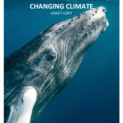 Pacific Whales in a Changing Climate