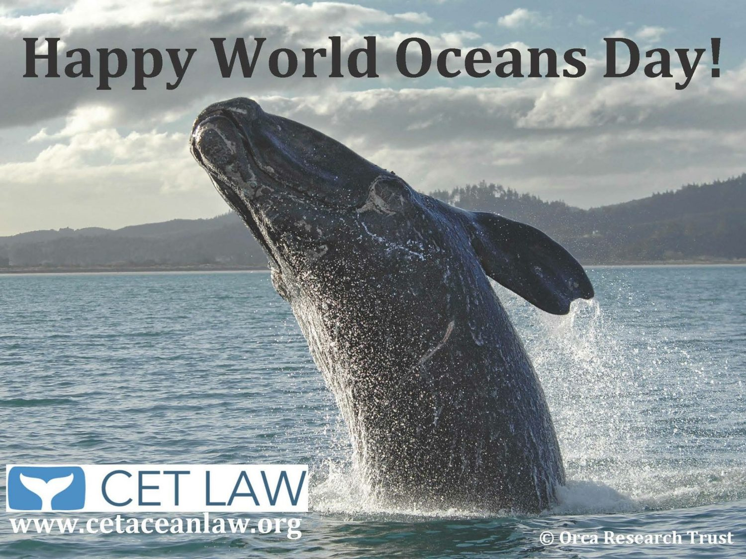 Happy World Oceans Day!!!